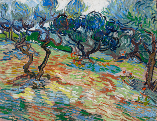 Vincent van Gogh, Olive Trees, 1889, oil on canvas, National Galleries Scotland. Purchased 1934