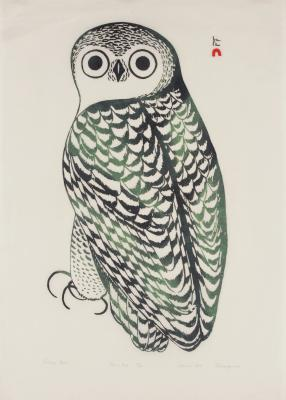 Kananginak Pootoogook, Inuit, Snowy Owl, 1969, silkscreen on paper, Dallas Museum of Art, gift of Mr. and Mrs. Duncan E. Boeckman, 2001.334