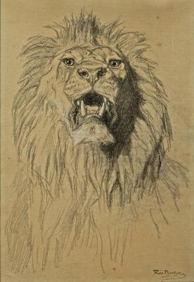 Rosa Bonheur, Lion's Head, c. 1880-1885, pencil heightened with white on paper, Dallas Museum of Art, Foundation for the Arts Collection, gift of Mr. and Mrs. Thomas C. Campbell, 2014.32.FA