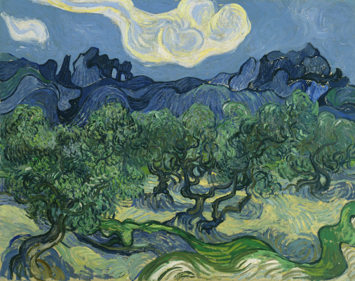 Vincent van Gogh, The Olive Trees, 1889, oil on canvas, The Museum of Modern Art, New York, Mrs. John Hay Whitney Bequest. Digital Image © The Museum of Modern Art/Licensed by SCALA / Art Resource, NY