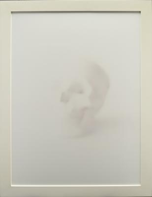 Sarah Charlesworth, Untitled (Skull) from the 0+1 series, 1999, laminated Fujiflex color photograph with lacquered wood frame; edition 1/8, Dallas Museum  of Art, gift of The Rachofsky Collection, 2012.55.3.