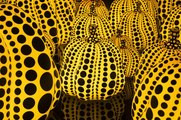 yayoi kusama all the eternal love i have for the pumpkins dallas