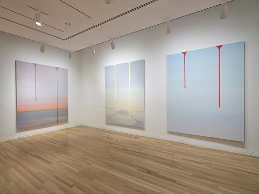 """Concentrations 62: Wanda Koop, Dreamline"" at the Dallas Museum of Art."