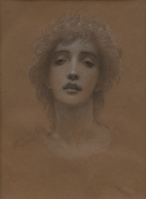 Adolf Hiremy-Hirschl, Head of a Young Woman, 1890s, black and white chalk on brown paper, Dallas Museum of Art, Bequest of William B. Jordan and Robert Dean Brownlee, 2019.72.29