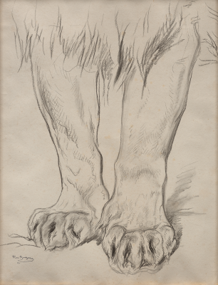 Rosa Bonheur, Pattes de lion, 1880-1885, black crayon on medium-weight wove paper with stumping, Dallas Museum of Art, bequest of William B. Jordan and Robert Dean Brownlee, 2019.72.5